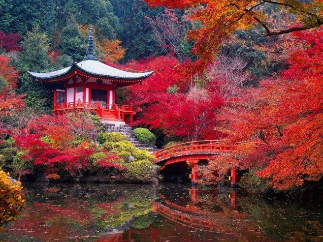 Kyoto+3